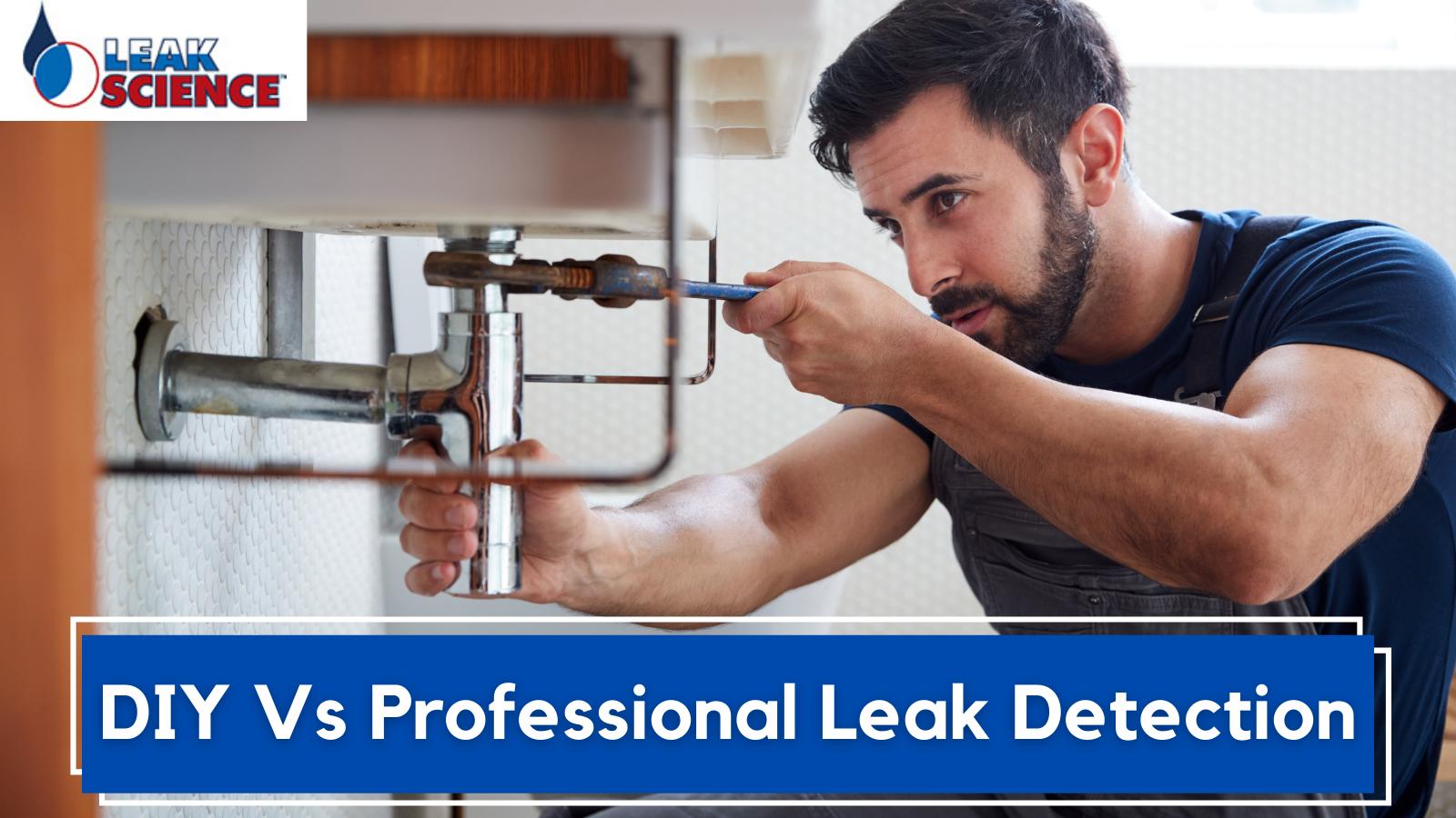 DIY Vs Professional Leak Detection